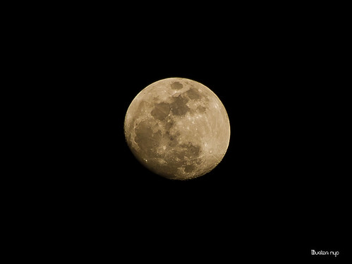 THE FLICKR MOON