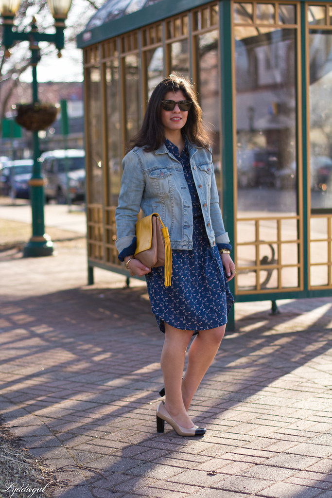 dragonfly print shirt dress, denim jacket-2.jpg