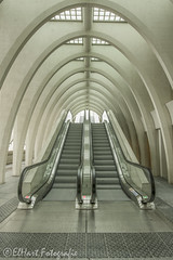 station Guillemins in Luik