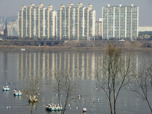Co-Seoul-Parc-Yeouido Hangang (58)