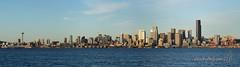 150316_SEA_0291 Panorama
