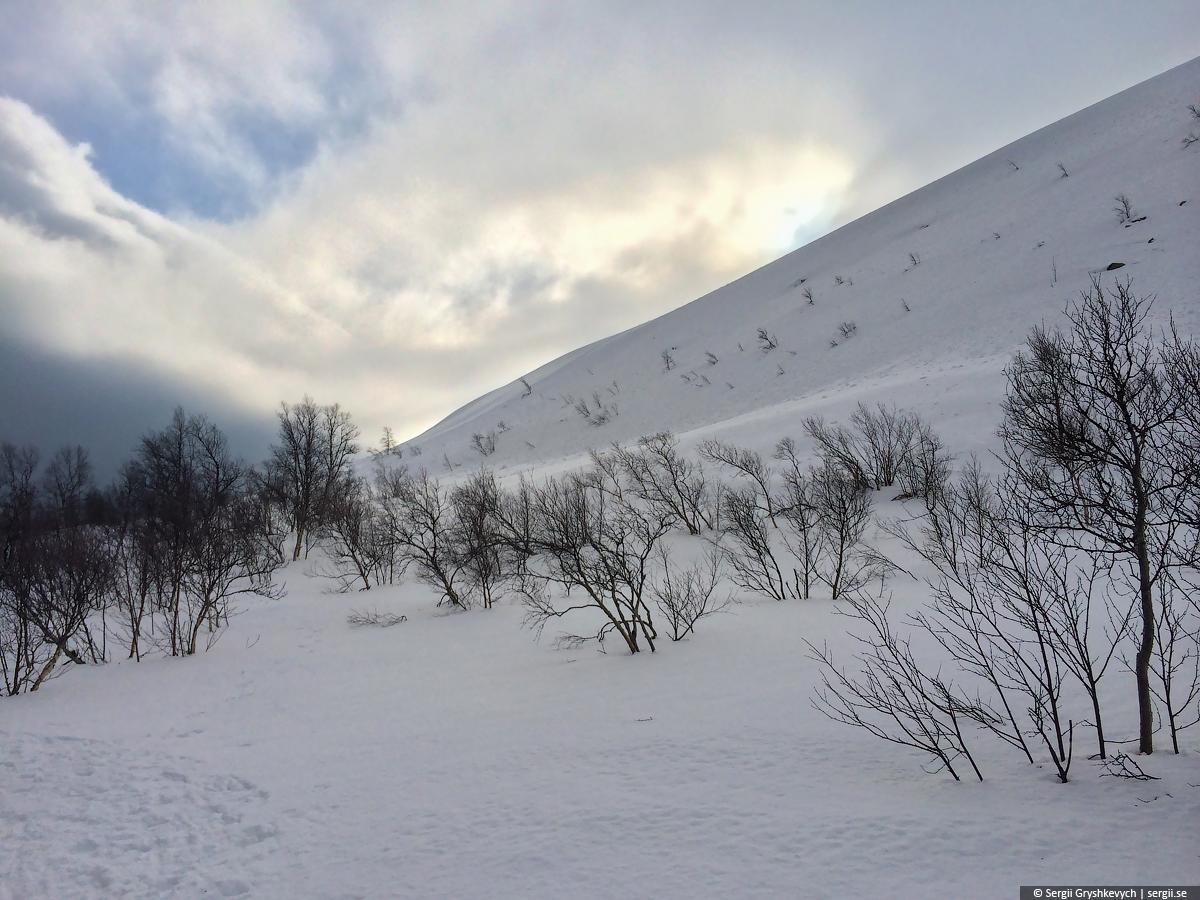 Njupskar_Fulufjallet_Dalarna_Sweden-13