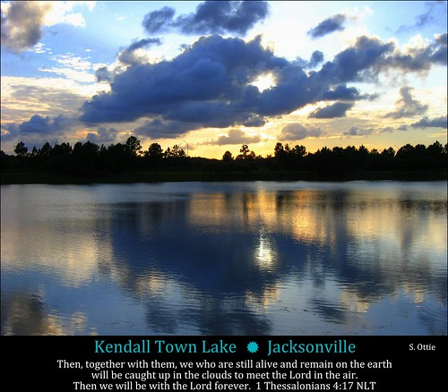 park blue trees light sunset orange usa lake reflection water grass silhouette clouds arlington america evening town us twilight florida dusk united jacksonville fl states kendall sunbeam