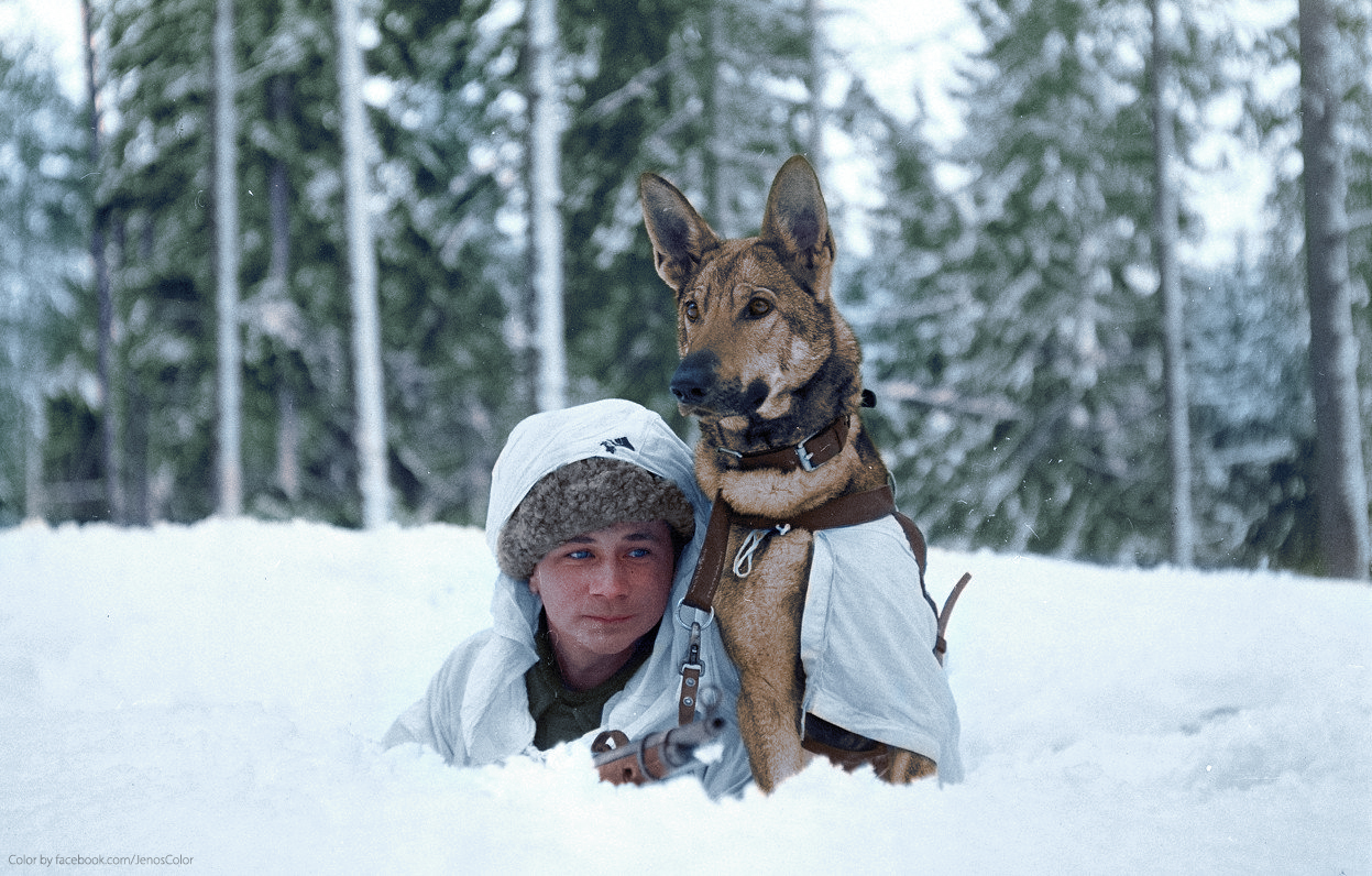 Dog Soldier 1941 Colorizedhistory And Finland His colorizedhistory A Finnish Hämeenlinna February