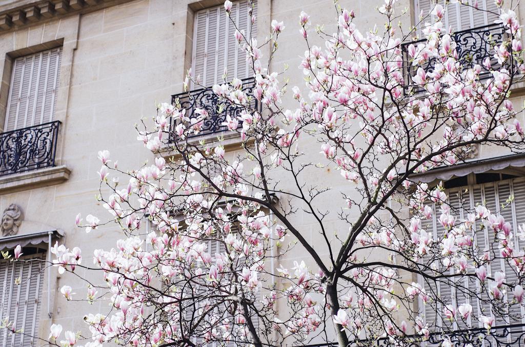 Paris, Easter Break