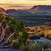 Overlooking Red Rocks by James Neeley