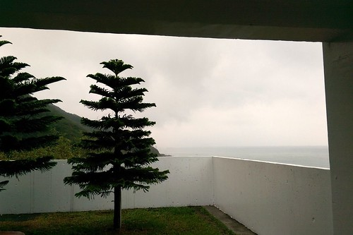 sea tree beach grey coast view cloudy taiwan hualien