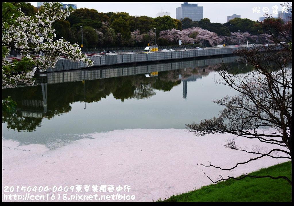 20150404~0409東京賞櫻自由行DSC_3046