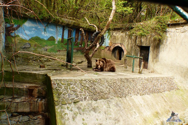 Zoo Bratislava 18.04.2015 17