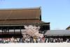 Photo:20150404 Kyoto Imperial Palace Park 9 By BONGURI