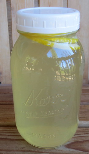 Lemon Kefir Water