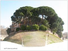 Isola Tiberina, Roma