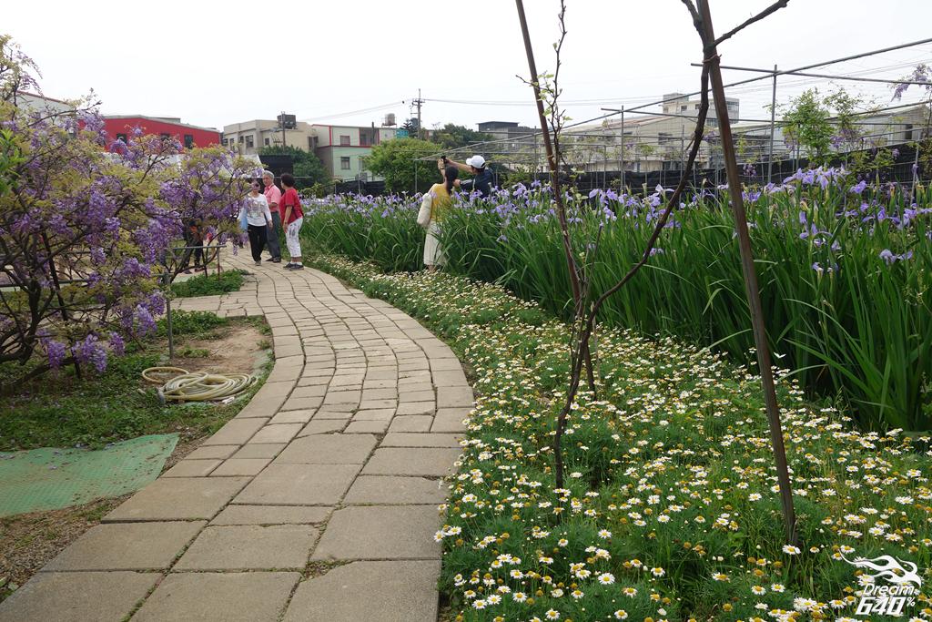 淡水紫藤咖啡園32