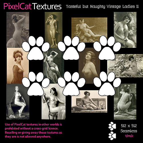 PixelCat Textures - Tasteful but Naughty Vintage Ladies II (nudes)
