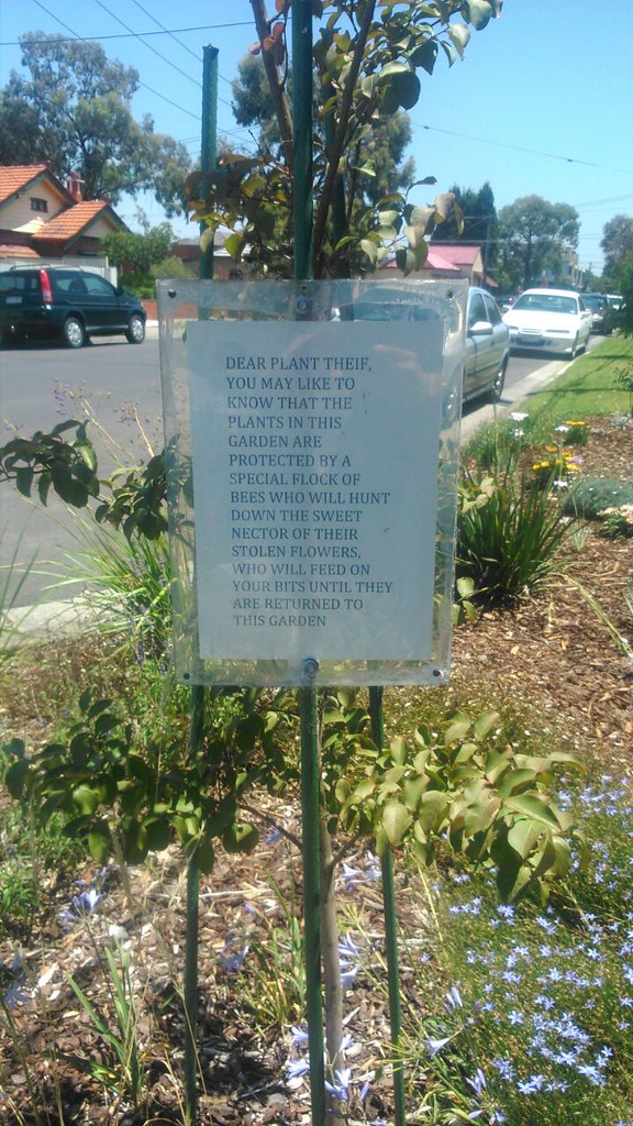 Dear Plant Theif, [sic] you may like to know that the plants in this garden are protected by a special flock of bees who will hunt down the nector [sic] of their stolen flowers, who will feed on your bits until they are returned to the garden.