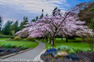 Vancouver - Stanley Park-377-Edit.jpg