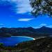Whinegrass Bay, Tassie