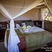 Bubbly Waiting In Our Room At Sango Safari Lodge, Botswana
