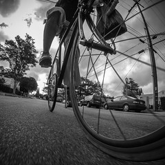 #gloomyday this morning #commuting #commute #fixed #fixedgear #biketowork #ridetowork #street #blackandwhite #powerlines #gopro