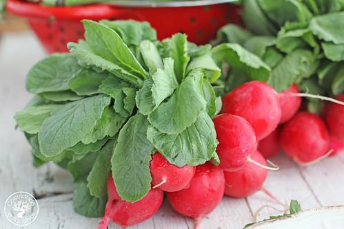 Ensalada-de-habas-tiernas,-tomate,-bacalao-y-rabanitos-(12)