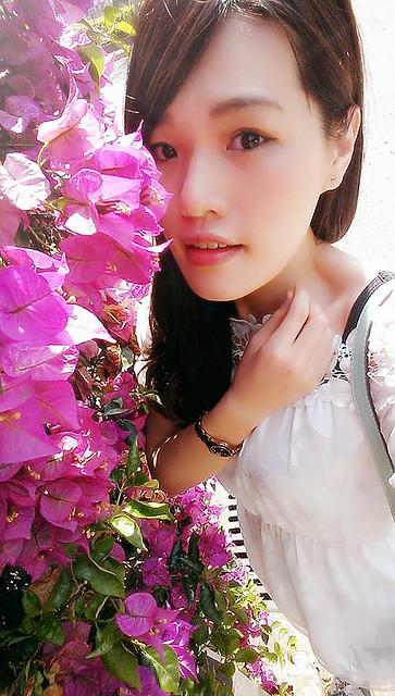 花 (6)
