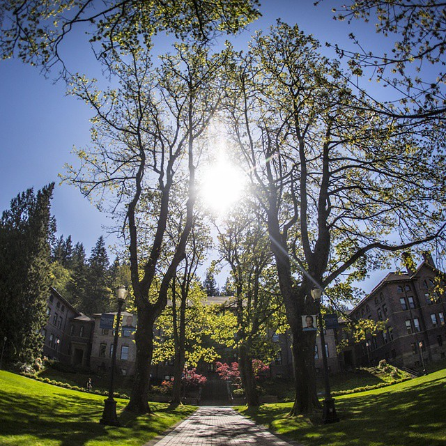 Hard to imagine a more beautiful Friday. Have a wonderful weekend, Vikings. #springatwestern #mywestern #upperleftusa #pnw