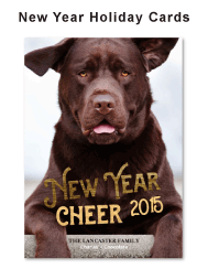new_year_holiday_cards_ff