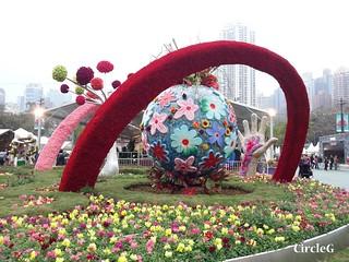 CIRCLEG 遊記 維多利亞公園 銅鑼灣 花展 2016 (25)