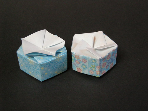 Double-twist pentagonal boxes