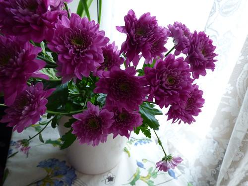 huhtikuun kukkia
