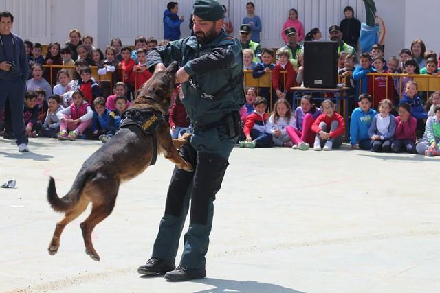 """AionSur 16712934237_c5de2f6256_z_d """"Mamá quiero ser guardia civil"""" Educación"""