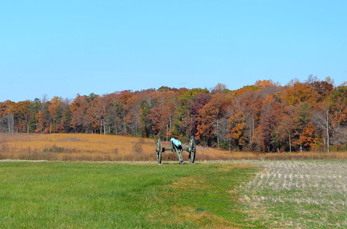 Malvern Hill's Fall Colors