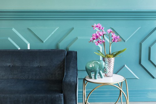 pink potted orchid with a ceramic blue elephant blue sofa | by ProFlowers.com
