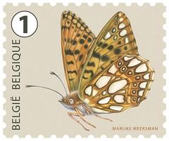 19bis c Kleine parelmoervlinder