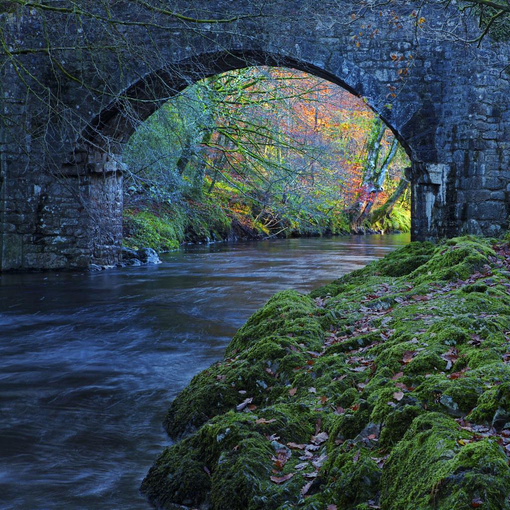 Dream Behind the Bridge