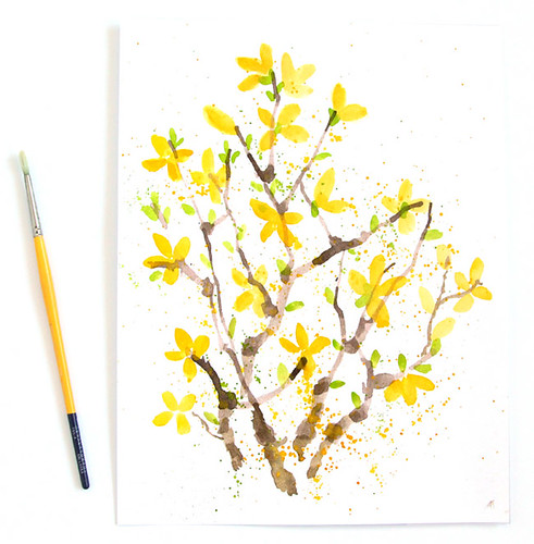 Painted Forsythia