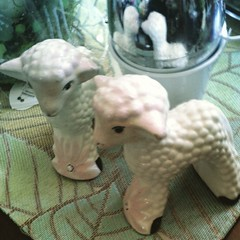Found these cute, a bit overpriced lambs at the Goodwill yesterday.