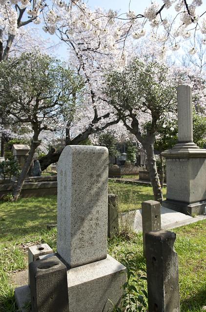 染井霊園 Miss Anna H. Kidder 1840-1913