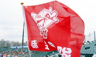 dragon_flag