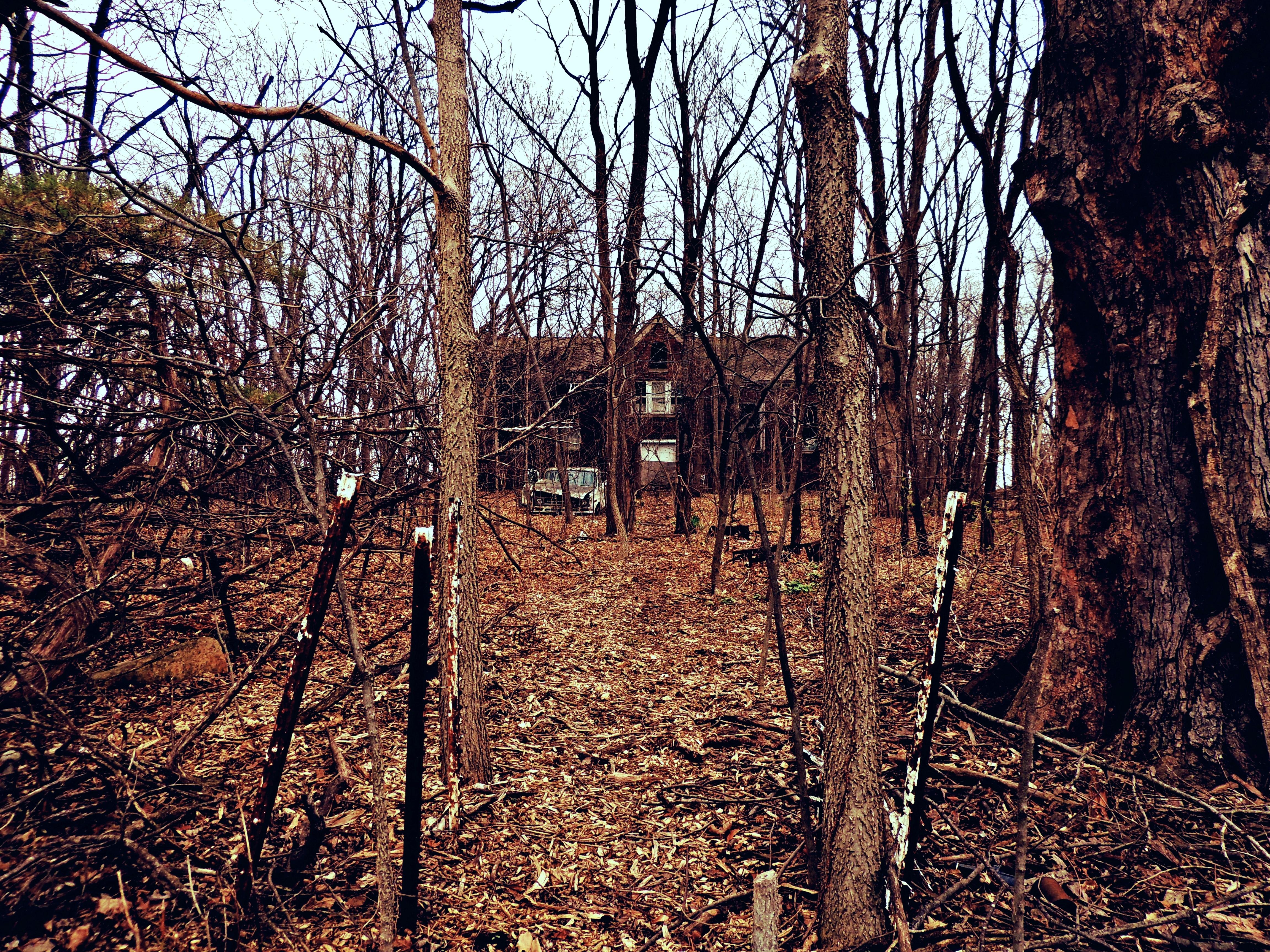 Illinois bureau county dover - School Abandoned Illinois Education Ruins Decay Schoolhouse Ruraldecay Dover Internationalharvester Illinoisabandonment Schoolconsolidation