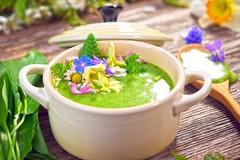 Spring soup, zuppa di primavera, vellutata di pise…