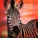 Zebra! by Sabvaning.