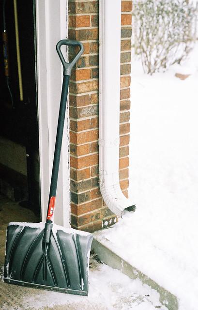 Still life with snow