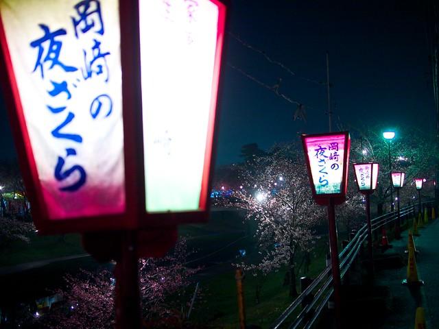 150329_OkazakiNightSakura 1