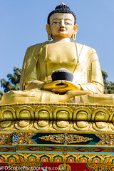1 of the 5 Panch Buddhas