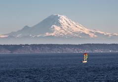Sailing under Rainier