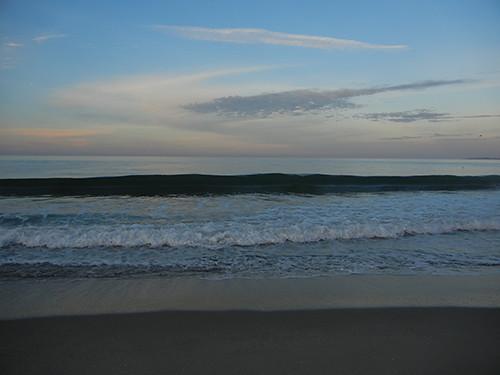 DSCN1830 Seascape Beach in Aptos, March 2015