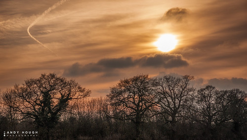trees sunset england clouds evening contrail unitedkingdom sony a350 sonyalpha andyhough upperton sonyzeissdt1680 andyhoughphotography