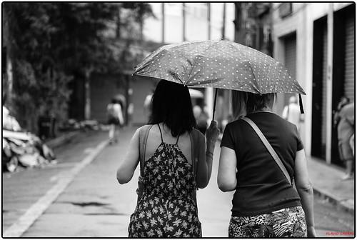 Guarda-chuva solidário