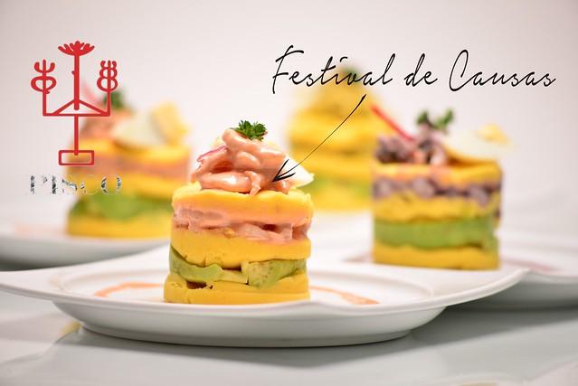 Festival de Causas